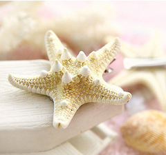 RichRipple natural true starfish handmade hairpin duckbill clip As the Picture Normal