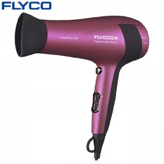 FLYCO Professional Anion Function Hair Dryer Hot and Cold Wind Household Salon Styling Tools as shown one size