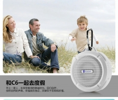 C6 waterproof bluetooth speaker wireless bluetooth audio outdoor sports mini speaker (white) one size