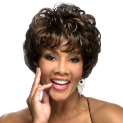 Best Short Natural Curly Hair Wigs Capless Human Hair Wigs For African Women Brown Brown one size