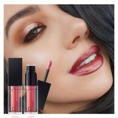 C000005 2017 Flüssige Lippenstifte Make-Up Langlebige Pigment Nude Wein Rot Metallic Matt Lipgloss 1