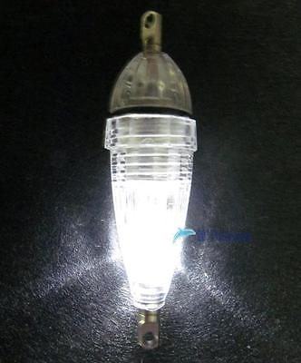 LED Flash Fishing Light Squid Lure Submersible Underwater Tackle Lamp White SG As picture