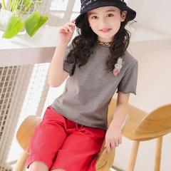 Kids Girls Cloth T-shirt Tops + Pants Outfits 2PCS Girl Clothes Toddler Girls Summer Clothing Set grey 110cm