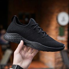 Men Casual Fly Knit Breathable Shoes 2019 Spring Autumn Men Shoes Mesh Slip On Loafers Sneaker Flats pure black 39