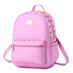 Ms. backpack functional high capacity color fresh and bright all-match fashionable women's backpack