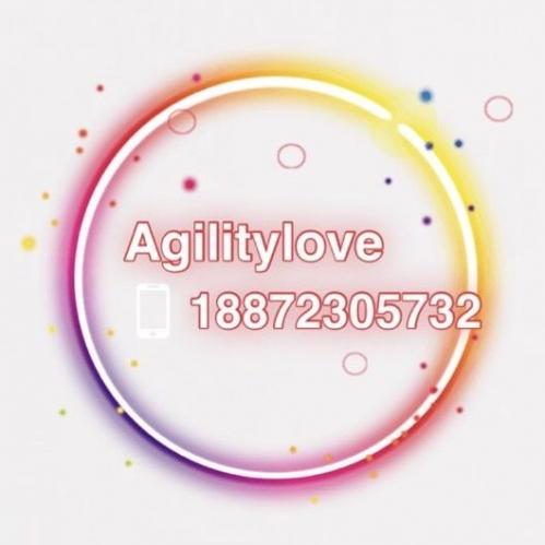 Agility Love