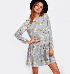 Allover Flower Print Drop Waist Dress Grey Long Sleeve Round Neck Cut Out Back Floral Cute Dresses as picture xs