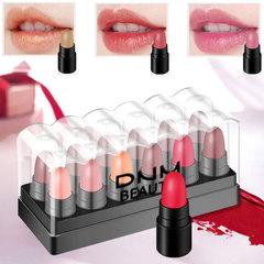 12 Colors Mini Moisturizing Matte Lipstick Set Women Maekup Long Lasting Waterproof Lip Stick 02 charming style