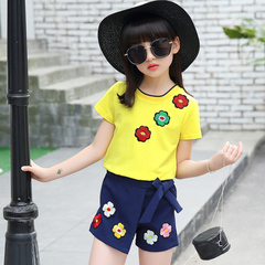 D-baby 2PCS Fashion Girl Printed Top + Short Pants Suit, Fashion Suit, Girl Suit BT001A 110(100cm)
