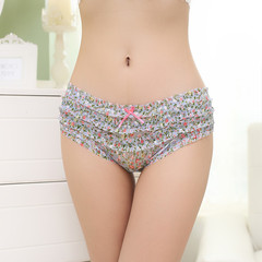 Fashion sexy cute mesh lace low waist underwear print transparent ladies elegant sexy lingerie white one size