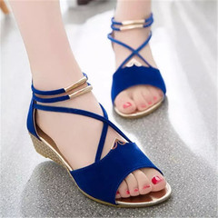 New style ladies'sandals shoes straps women round head simple low-heeled women slippers blue 38