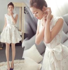 Korean Temperament Lace Sweet Princes Dress white xxl