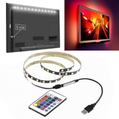 1 meter 5V 5050 60SMD/M RGB LED Strip Light TV Back Lighting Kit+USB 24Key Remote