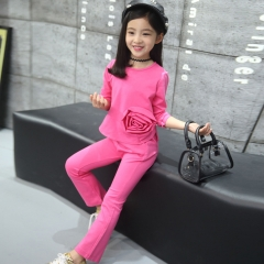 2018 Hot Girls Clothing Children Flower Sports Sets Red Rose Clothes Tops and Pants pink 110cm