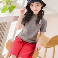 Kids Girls Cloth T-shirt Tops + Pants Outfits 2PCS Girl Clothes Toddler Girls Summer Clothing Set grey 110cm